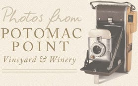 Photos from Potomac Point Vineyard and Winery