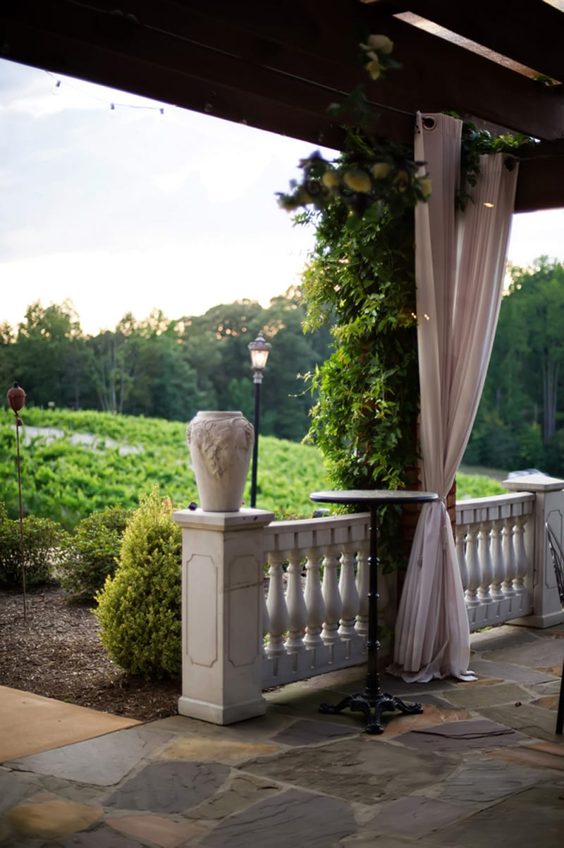 View of the Vineyard from the Richland Patio