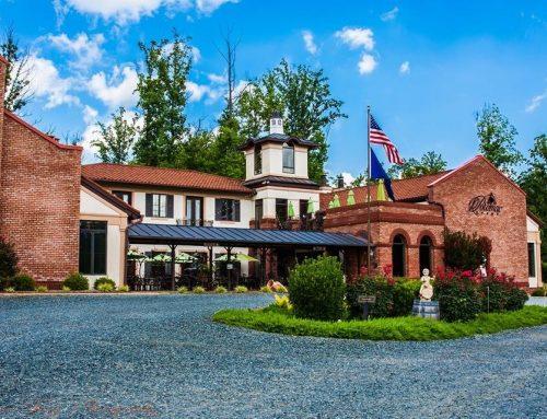 Potomac Point Vineyard Videos