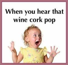 cork pop