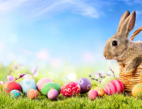 Indoor Easter Ideas for 2020